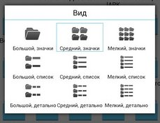 выбор вида отображения файлов и папок